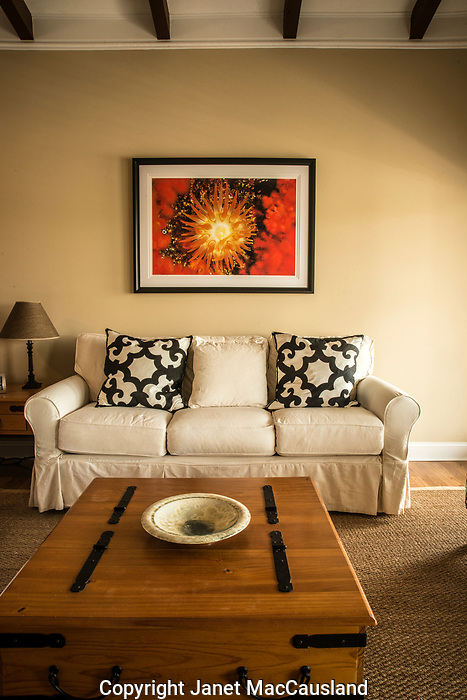 """This is an installation at a customer's Beach Home in NC of file DSC_5134_Anemone. It is printed on 100% Cotton Rag and framed behind glass. The image is a 45"""" wide giclee."""