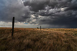 Storm clouds dropping rain over a fence nd field in rural Saskatchewan.