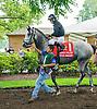 Real Smart before The Robert G. Dick Memorial Stakes (gr 3) at Delaware Park on 7/9/16