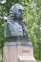 A statue of Carl von Linné Linne Carolus Linnaeus in the cathedral park. In the Linné Linne Linnaeus park. Vaxjo town. Smaland region. Sweden, Europe.