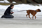 Jayden Mortensen, 12, of Manchester, gets a ride from his friends boxer, Saturday, January 27, 2018, at Charter Oak Park in Manchester. (Jim Michaud / Journal Inquirer)