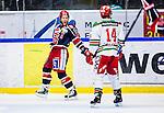 S&ouml;dert&auml;lje 2013-12-12 Ishockey Hockeyallsvenskan S&ouml;dert&auml;lje SK - Mora IK :  <br /> S&ouml;dert&auml;lje 14 Robert Carlsson jublar efter att ha kvitterat till 2-2 i slutet av matchen<br /> (Foto: Kenta J&ouml;nsson) Nyckelord:  jubel gl&auml;dje lycka glad happy