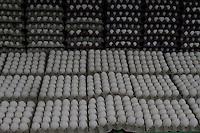 Vista de un puesto de huevos que son exhibidos para su venta, hoy, jueves 27 de enero de 2010, en el mercado de la feria ganera en Santo Domingo, República Dominicana..Foto : © Roberto Guzman