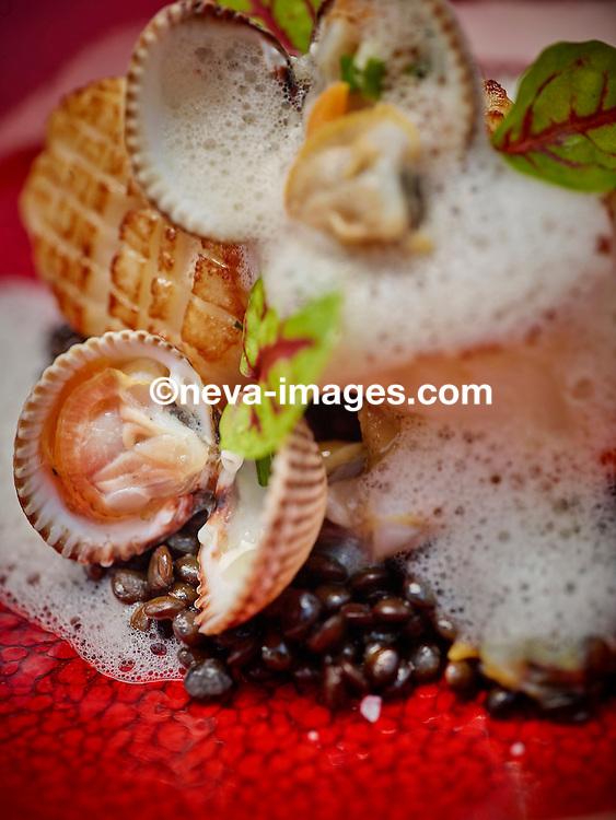 Th&ocirc;nex, le 16 f&eacute;vrier 2017, Restaurant le Cigalon, Jean Marc Bessire avec sa p&acirc;tissi&egrave;re Denise nous pr&eacute;sentent une diversit&eacute; de plats en poisson et chocolat , ICI Noix de Saint-Jacques saut&eacute;e au naturel<br /> Lentilles &laquo;&nbsp;beluga&nbsp;&raquo; de Sauverny aux coques <br /> &copy; sedrik nemeth