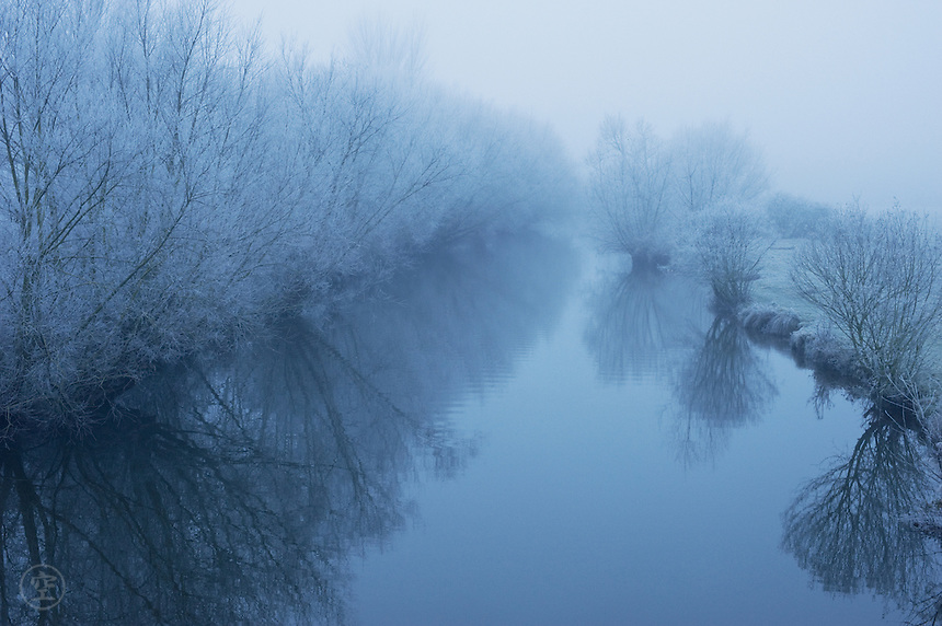 Freezing fog on the River Cherwell leaves the bare winter willow branches touched with ice, Oxford, England.