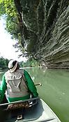 War Eagle River Swamp