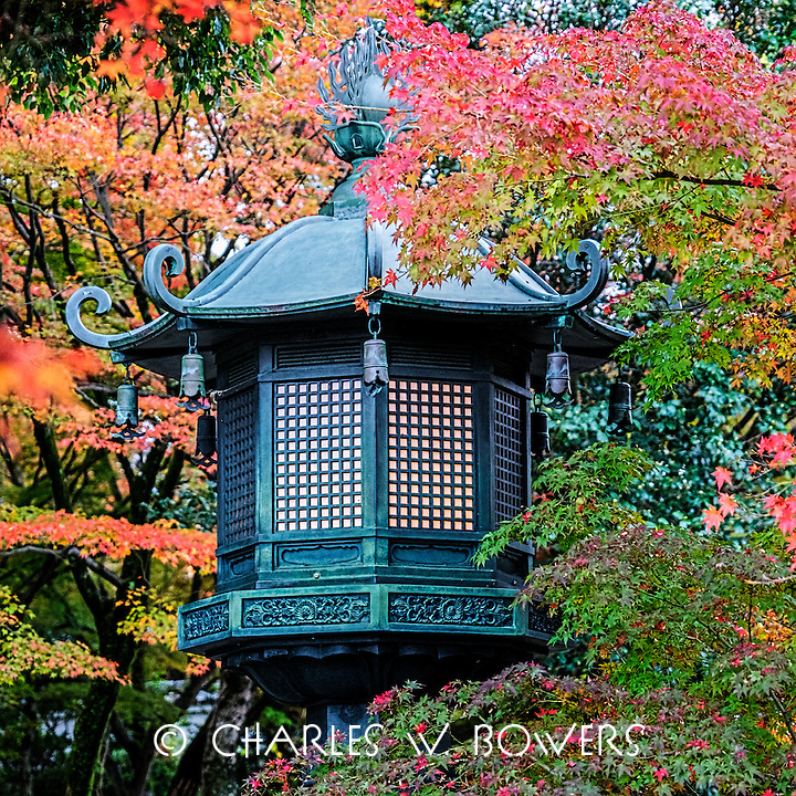 Images emblematic of Japan.