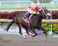 Force Freeze captures the Gulfstream Park Sprint Championship on 2-18-12. Ridden by Paco Lopez