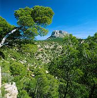 Spain, Murcia, near Alhama de Murcia: Sierra Espuna National Park, Espuna Peak | Spanien, Murcia, bei Alhama de Murcia: Parque Regional de Sierra Espuna: Espuna Gipfel