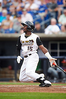 Quad Cities River Bandits designated hitter Hector Roa (15) at bat during a game against the Bowling Green Hot Rods on July 24, 2016 at Modern Woodmen Park in Davenport, Iowa.  Quad Cities defeated Bowling Green 6-5.  (Mike Janes/Four Seam Images)