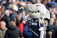 20130317 Copyright onEdition 2013©.Free for editorial use image, please credit: onEdition..Sharkie, the Sale Sharks mascot, encourages fans during the LV= Cup Final between Harlequins and Sale Sharks at Sixways Stadium on Sunday 17th March 2013 (Photo by Rob Munro)..For press contacts contact: Sam Feasey at brandRapport on M: +44 (0)7717 757114 E: SFeasey@brand-rapport.com..If you require a higher resolution image or you have any other onEdition photographic enquiries, please contact onEdition on 0845 900 2 900 or email info@onEdition.com.This image is copyright onEdition 2013©..This image has been supplied by onEdition and must be credited onEdition. The author is asserting his full Moral rights in relation to the publication of this image. Rights for onward transmission of any image or file is not granted or implied. Changing or deleting Copyright information is illegal as specified in the Copyright, Design and Patents Act 1988. If you are in any way unsure of your right to publish this image please contact onEdition on 0845 900 2 900 or email info@onEdition.com