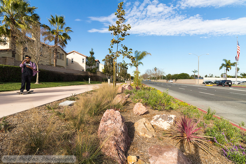A skateboarder talking on their phone rides towards the camera on the Harbor Boulevard Cornerstone Bike Trail in Costa Mesa, California under a blue sky with partial clouds.  A variety of landscaping plants and rocks can be seen in the foreground, and an American flag is visible in a car dealership across the street. The landscape architecture work on the project was done by David Volz Design.