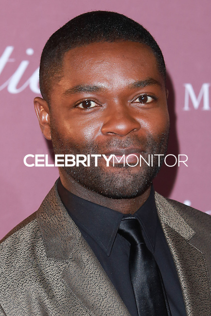 PALM SPRINGS, CA, USA - JANUARY 03: David Oyelowo arrives at the 26th Annual Palm Springs International Film Festival Awards Gala Presented By Cartier held at the Palm Springs Convention Center on January 3, 2015 in Palm Springs, California, United States. (Photo by David Acosta/Celebrity Monitor)