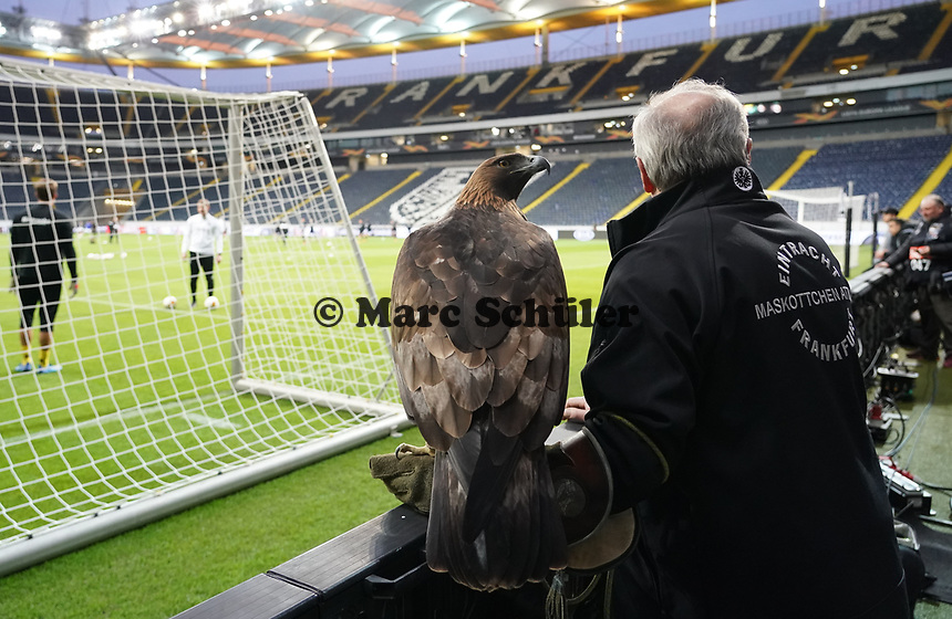 Eintracht Maskottchen Attila - 12.03.2020: Eintracht Frankfurt vs. FC Basel, UEFA Europa League, Achtelfinale, Commerzbank Arena<br /> DISCLAIMER: DFL regulations prohibit any use of photographs as image sequences and/or quasi-video.