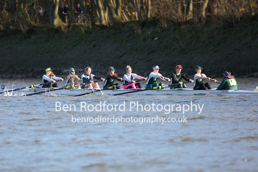 Crew: 84   City of Bristol (Bloom)   W Senior<br /> <br /> Quintin Head 2019<br /> <br /> To purchase this photo, or to see pricing information for Prints and Downloads, click the blue 'Add to Cart' button at the top-right of the page.