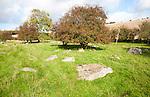 Piggle Dene is a National Trust area of chalk dry valley with sarsen stones, Lockeridge, Wiltshire, England, UK