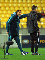 Melbourne coach John van't Schip makes a point to 4th official Matthew Conger during the A-League football match between Wellington Phoenix and Melbourne City FC at Westpac Stadium in Wellington, New Zealand on Saturday, 8 October 2016. Photo: Dave Lintott / lintottphoto.co.nz