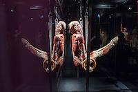 2015/02/17 Berlin | Menschen-Museum | Körperwelten-Ausstellung