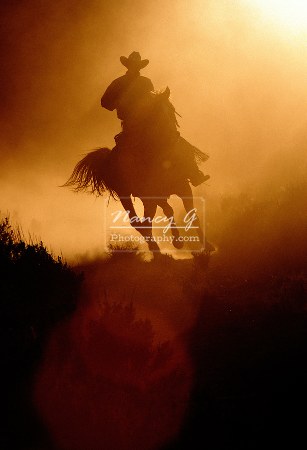 Cowboy running his horse backlit with sunlight through the Oregon dust .