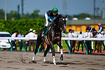 TOYOAKE,JAPAN-JUL 7: Arctos,ridden by Hironobu Tanabe, is post parading before the Procyon Stakes at Chukyo Racecourse on July 7,2019 in Toyoake,Aichi,Japan. Kaz Ishida/Eclipse Sportswire/CSM