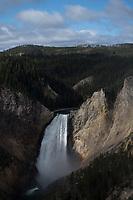 Yellowstone National park nella foto il parco geografico Yellowston National Park 03/10/2017 foto Matteo Biatta  Yellowstone National Park in the picture the park geographic Yellowstone National 03/10/2017 Park photo by Matteo Biatta