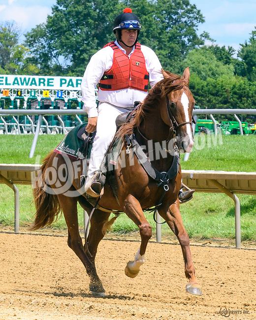 Willie at Delaware Park on 7/26/17