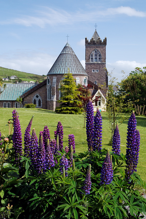 St. Mary's Church and flower gardens, Dingle (An Daingean), Dingle Peninsula, County Kerry, Republic of Ireland