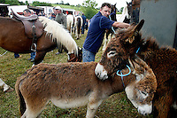 Spancill Hill horse fair, County Clare, Ireland, 23, July 2007..At one time, Spancill hill was said to be Ireland's largest fair with buyers from Britain, Russia, Prussia, and France competing to purchase the best stock for their Imperial armies. Recently the fair has been revived and is now going from strength to strength..Spancill Hill is also traditional Irish folk song which bemoans the plight of the Irish immigrants who so longed for home from their new lives in America, many of them who went to America with the Gold Rush.This song is sung by a man who longs for his home in Spancill Hill, his friends and the love he left there. All the characters and places in this song are real. .Photo By James Horan 23, July 2007. Spancill Hill horse fair. A scene from the Spancill Hill horse Fair Co Clare.At one time, Spancill hill was said to be Ireland's largest fair with buyers from Britain, Russia, Prussia, and France competing to purchase the best stock for their Imperial armies. Recently the fair has been revived and is now going from strength to strength..Spancill Hill is also traditional Irish folk song which bemoans the plight of the Irish immigrants who so longed for home from their new lives in America, many of them who went to America with the Gold Rush.This song is sung by a man who longs for his home in Spancill Hill, his friends and the love he left there.