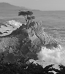 """Cypress Waves"" Black and White. 17 Mile Drive- Pebble Beach, California.  The famous Lone Cypress Tree on the Pacific Ocean with the waves crashing into the coastline. I took this photograph and had to leave to pick some friends up at the airport in San Francisco.  The sunset colors eventually developed into the image titled ""Monet on Monterey"" ..... which I captured by pulling off the highway and racing to the beach just in time .... arghhhhh"