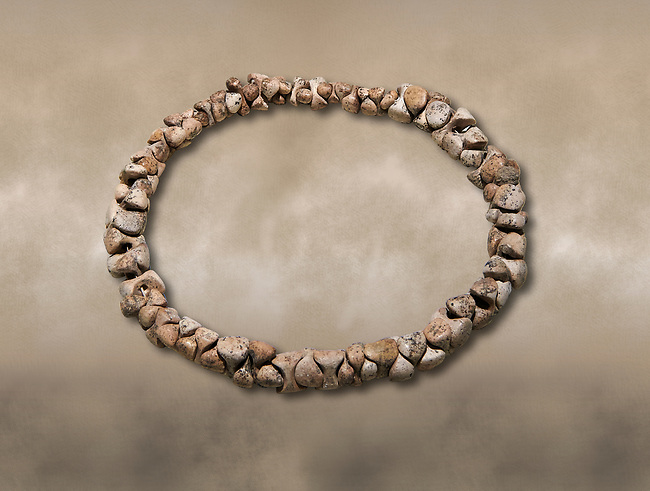 Bone necklace. Catalhoyuk Collections. Museum of Anatolian Civilisations, Ankara