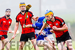 In Action Ballyheigue's Mark Dineen and Paudie Carroll in the Garvey's Super Valu Senior County Hurling Championship Round 2B Ballyheigue V St Brendan's in Causeway on Sunday