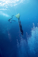 "Freediving competition ""Bizzy Blue Hole"" in Dahab, Sinai, Egypt. .Bjarte Nygard 67 meter CWF"