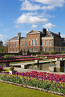 United Kingdom, England, London - Kensington: Kensington Palace and gardens with spring Tulips | Grossbritannien, England, Kensington im Westen Londons, Stadtbezirk Kensington and Chelsea: Kensington Palace and Gardens