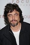"HOLLYWOOD, CA. - December 07: Benicio Del Toro attends the ""Somewhere"" Los Angeles Premiere at ArcLight Cinemas on December 7, 2010 in Hollywood, California."
