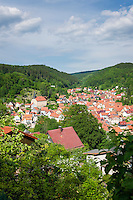 Germany, Thuringia, Steinbach (Bad Liebenstein): mountain village and ditrict of Bad Liebenstein, Martin Luther was arrested 1521 above the village | Deutschland, Thueringen, Steinbach (Bad Liebenstein): Bergdorf und Ortsteil der Stadt Bad Liebenstein, Martin Luther wurde 1521 oberhalb des Ortes gefangen genommen