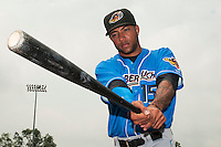 Akron RubberDucks infielder Ronny Rodriguez (15) prior to game against the Trenton Thunder at ARM & HAMMER Park on July 14, 2014 in Trenton, NJ.  Akron defeated Trenton 5-2.  (Tomasso DeRosa/Four Seam Images)