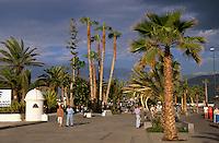 Spanien, Kanarische Inseln, Teneriffa, Avenida de Colon in Puerto de la Cruz
