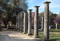 Columns of the Palaestra, Olympia, 3rd century BC, part of the Gymnasium complex at Olympia, home of the Ancient Olympic Games - Excavation in the 19th century