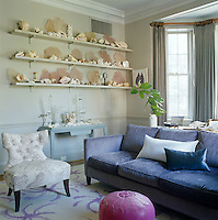 A collection of sea fans, coral and shells is displayed on a set of three open shelves along one wall of the living room