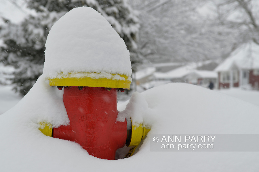 March 5, 2015. Merrick, New York, United States. A red and yellow fire hydrant is almost covered by snow falling yet again on the south shore of Long Island, which is receiving the heaviest snow on L.I., with an accumulation of 6 to 8 inches expected. Many school closed due to hazardous travel conditions, and a Winter Weather Watch is in effect until 7 PM.