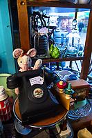 Bear Flag shop in Masterton, New Zealand on Thursday, 30 July 2020. Photo: Dave Lintott / lintottphoto.co.nz