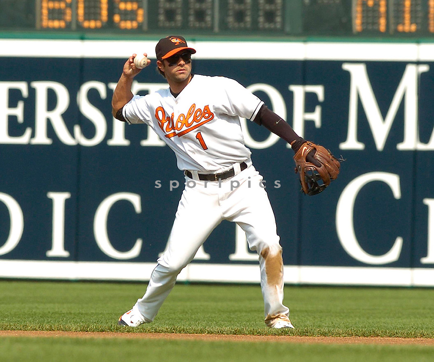 BRIAN ROBERTS, of the Baltimore Orioles, in action during the  Orioles game against the Oakland A's in Baltimore Maryland on April 24, 2007...A's win 4-2...DAVID DUROCHIK / SPORTPICS..