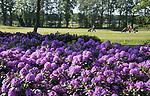 WINTERSWIJK -  Hole 2. Golf & Country Club Winterswijk, golfbaan De Voortwisch.     COPYRIGHT  KOEN SUYK