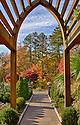 Duke Gardens Photo Walk