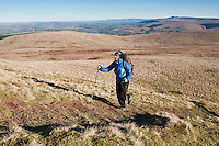 Female hiker hiking along Beacons way towards Fan Brycheiniog, Black Mountain, Brecon Beacons national park, Wales