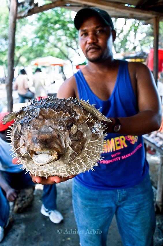 Dried Puffer  fishon  sale in Dar e Salaam market , Tanzania.