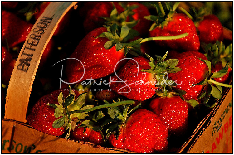 A basket of bright juicy strawberries from Patterson Farm, near Mooresville, NC