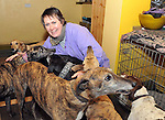 Amanda cares for her greyhounds near Beaufort about 10 miles from Killarney..Picture by Don MacMonagle