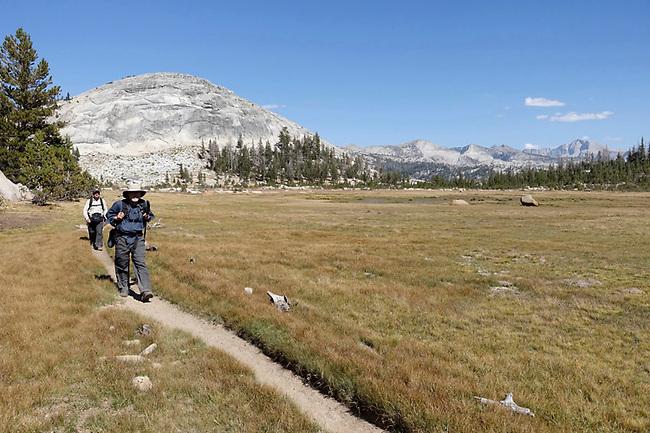Trail on High Sierra Camp, Yosemite.  Near Sunrise Camp