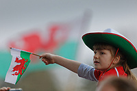 A young rugby supporter waves a flag during the Celebration for Wales Six Nations Win at the National Assembly for Wales, Cardiff Bay, Wales, UK. Monday 18 March 2019